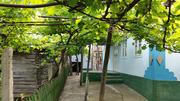 Продается жилой дом в селе Воронково (Цена ДОГОВОРНАЯ)